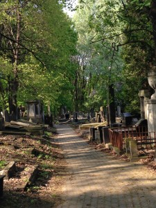 Gensha Cemetery in Warsaw