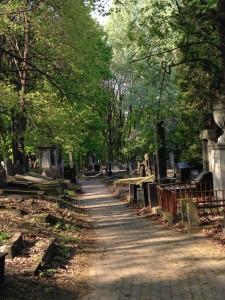 Gensha Cemetery in Warsaw