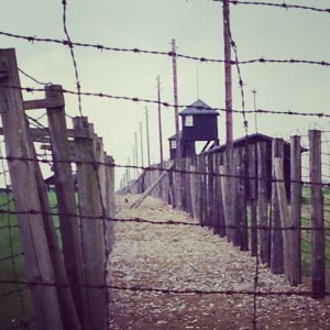 majdanek